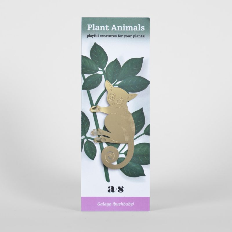another-studio-plant-animal-buschbaby-pflanzendeko