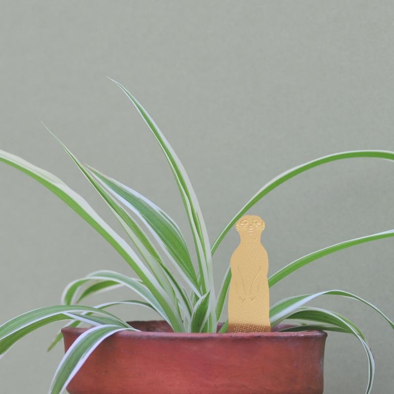 another-studio-plant-animal-erdmaennchen-pflanzendeko
