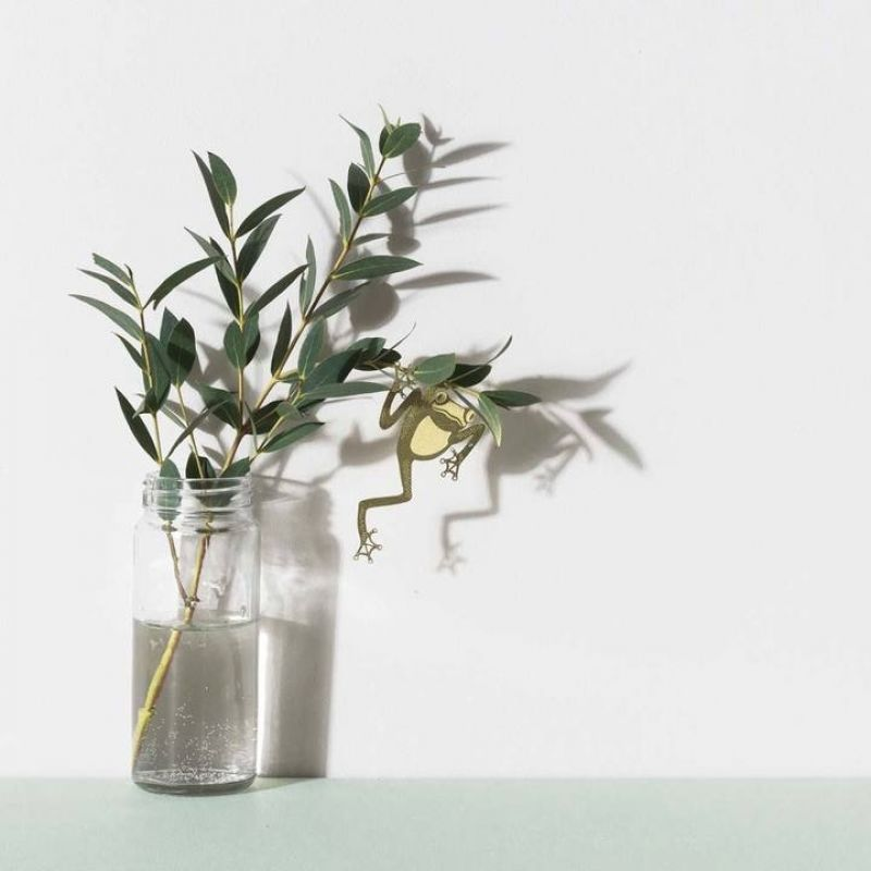 Another Studio - PLANT ANIMAL – Laubfrosch