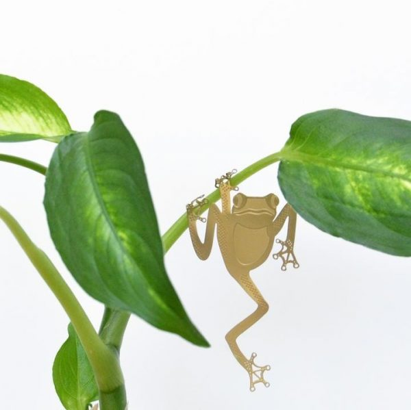 Another Studio - PLANT ANIMAL – Laubfrosch-0