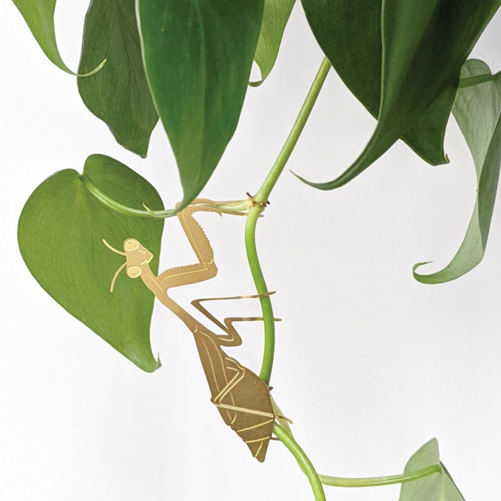 another-studio-plant-animal-gottesanbeterin-pflanzendeko
