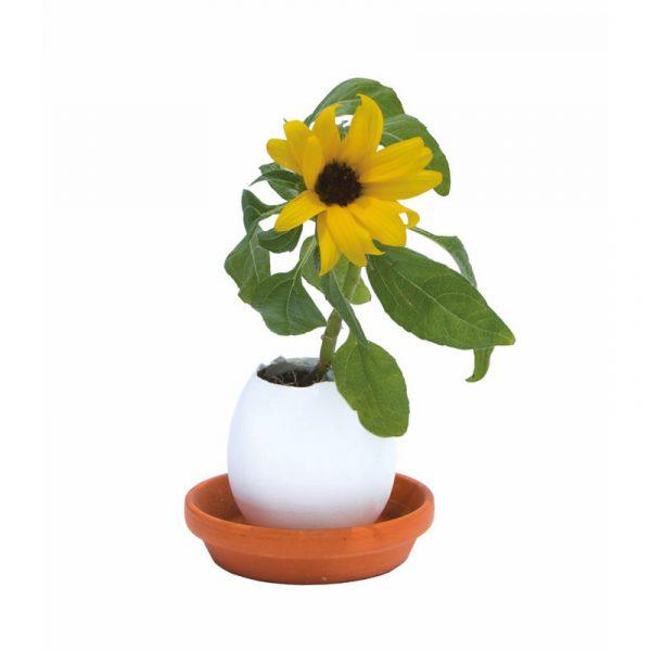 eggling-osterei-keramikei-sonnenblume