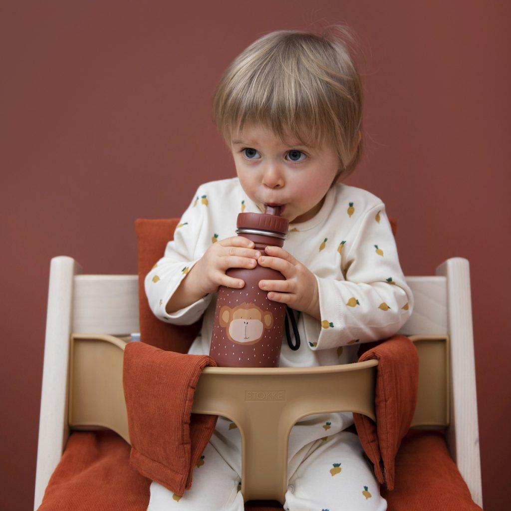 trixie-kindertrinkflasche-aus-edelstahl-350ml-mr-monkey